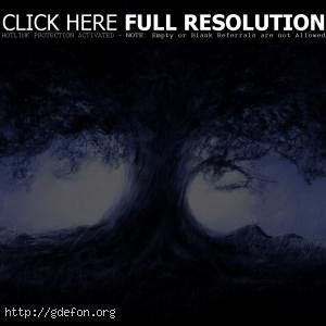 Дерево, рисунок, ночь, свет, луна
