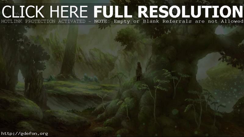 Обои Человек, лес, деревья, свет, рисунок фото картики заставки